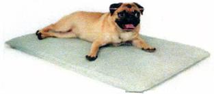 犬用ウォーターベッド