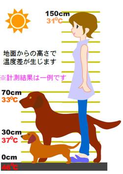 人と動物との体感気温の差