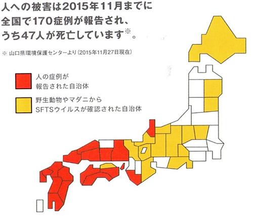 日本でのSFTS発症数