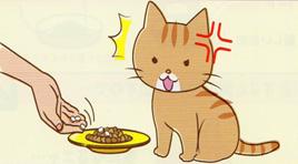 食事の時にペットの嫌がることをしない