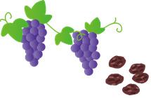ブドウ、干しブドウ