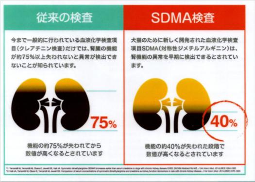従来の検査と、SDMA検査との違い