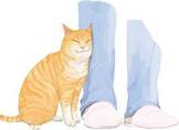すりよる猫